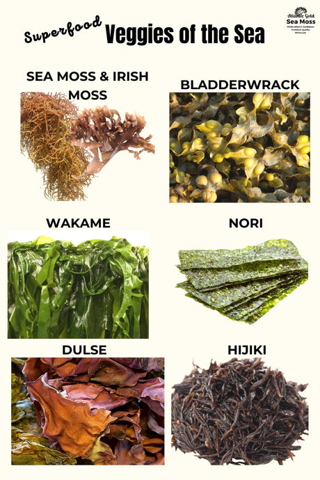 Superfood Veggies of the Sea