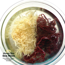 Load image into Gallery viewer, Wholesale Sea Moss, 12/Case, Gold'n'Purp