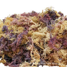 Load image into Gallery viewer, where to buy sea moss, sea moss, sea moss gel, Irish moss gel,Irish moss, wholesale, wildcrafted, Dr Sebi,alkaline food, collagen, Iodine, thyroid