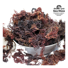 Load image into Gallery viewer, sea moss, sea moss gel, purple sea moss, Irish moss nutrients, wholesale, wildcrafted, Dr Sebi, collagen, Iodine, thyroid