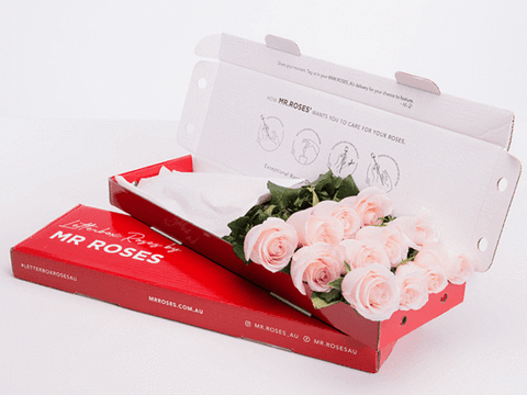 pastel pink roses gift box from mr roses