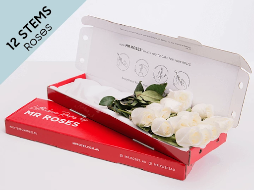 Classic 12 White Cream Roses Gift Box