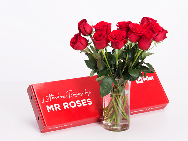 Mr roses gift box with long stem red roes