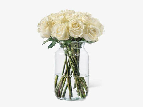 beautiful long stem roses in a vase