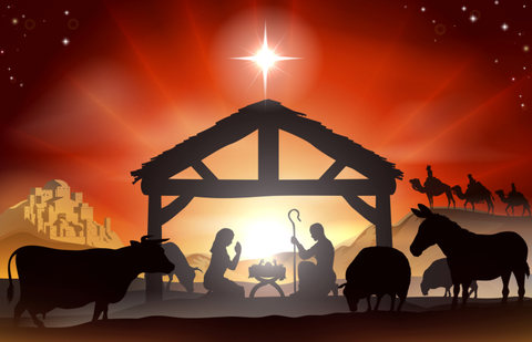 A Star Is Born Christmas Curriculum