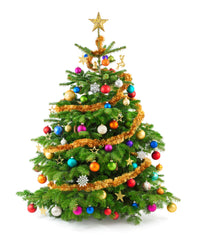 Free Christmas Images.97 For 775 Worth Of Christmas Children S Ministry Curriculum Christmas Tree Bundle