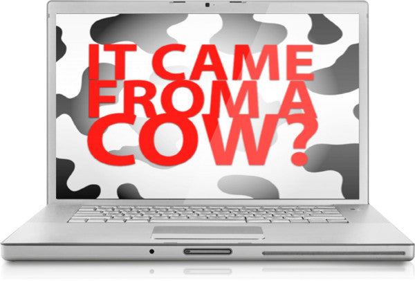 It Came From a Cow PowerPoint Game