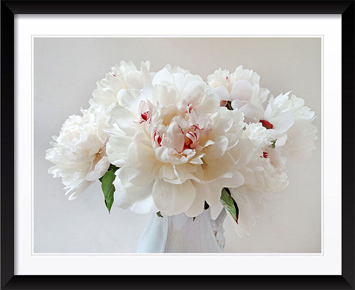 """Peonies"" by Tom Artin Photography"