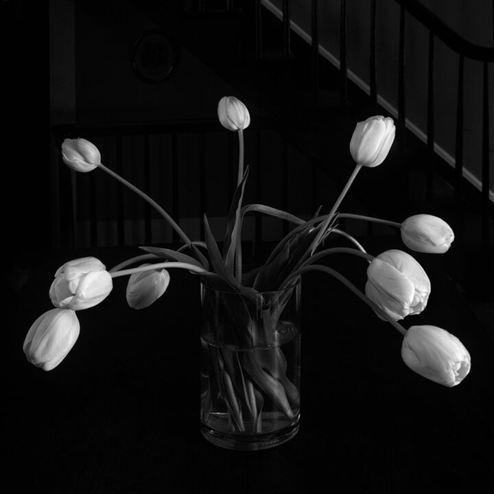 """Tulips In Vase"" by Tom Artin Photography"