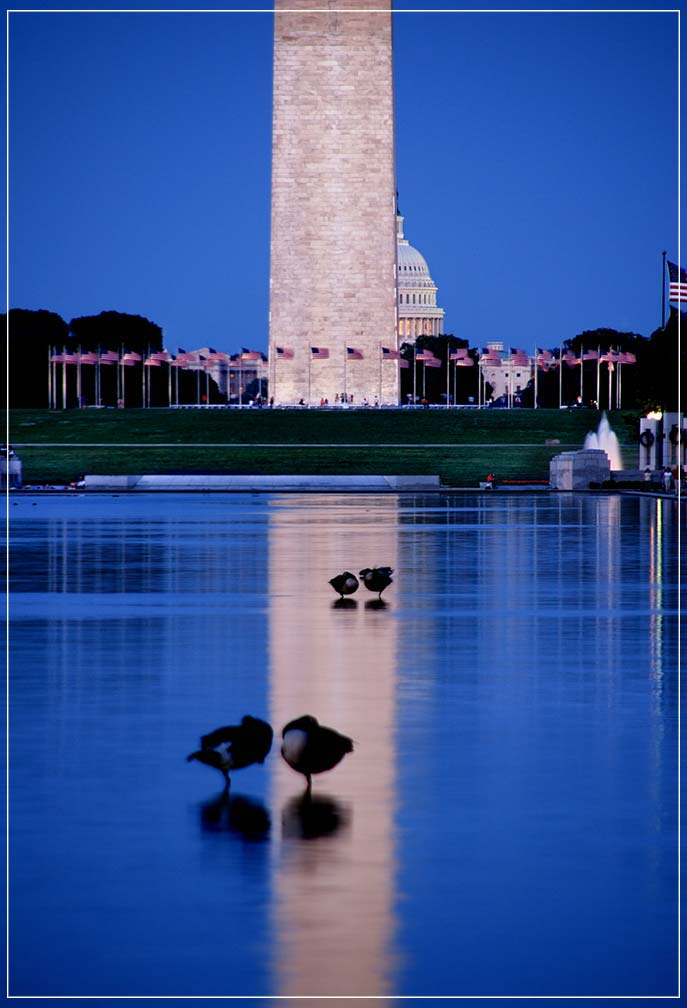 """Reflecting Pool"" by Viet Chu Photography-Artography Limited"