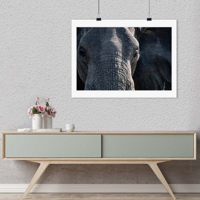 """Elephant Close-up"" by Viet Chu Photography-Artography Limited"