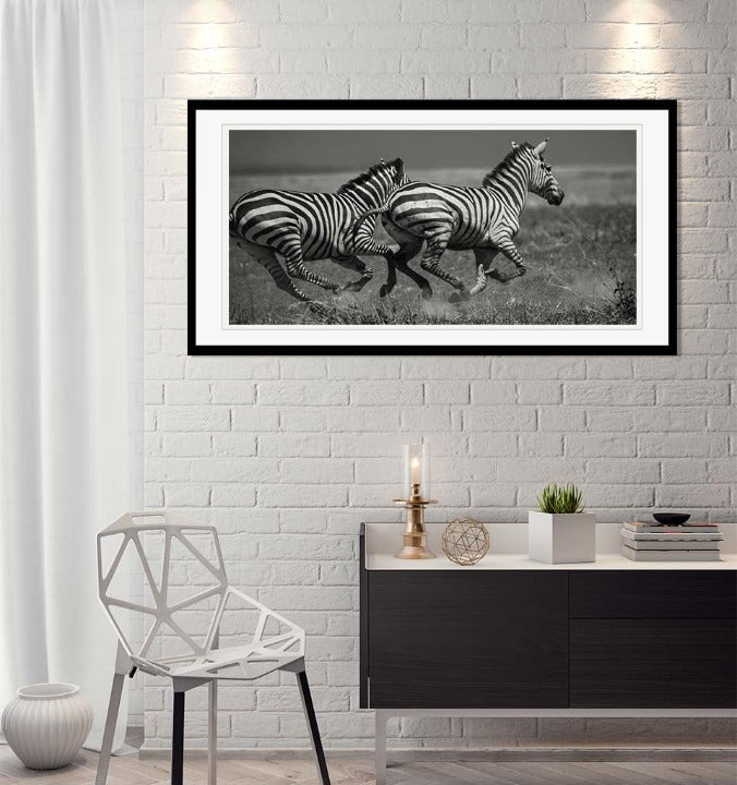 """Galloping Zebras"" by Viet Chu Photography-Artography Limited"