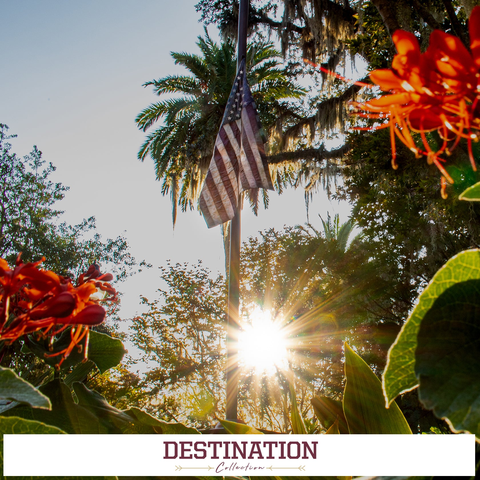 FSU Seminoles - Destination
