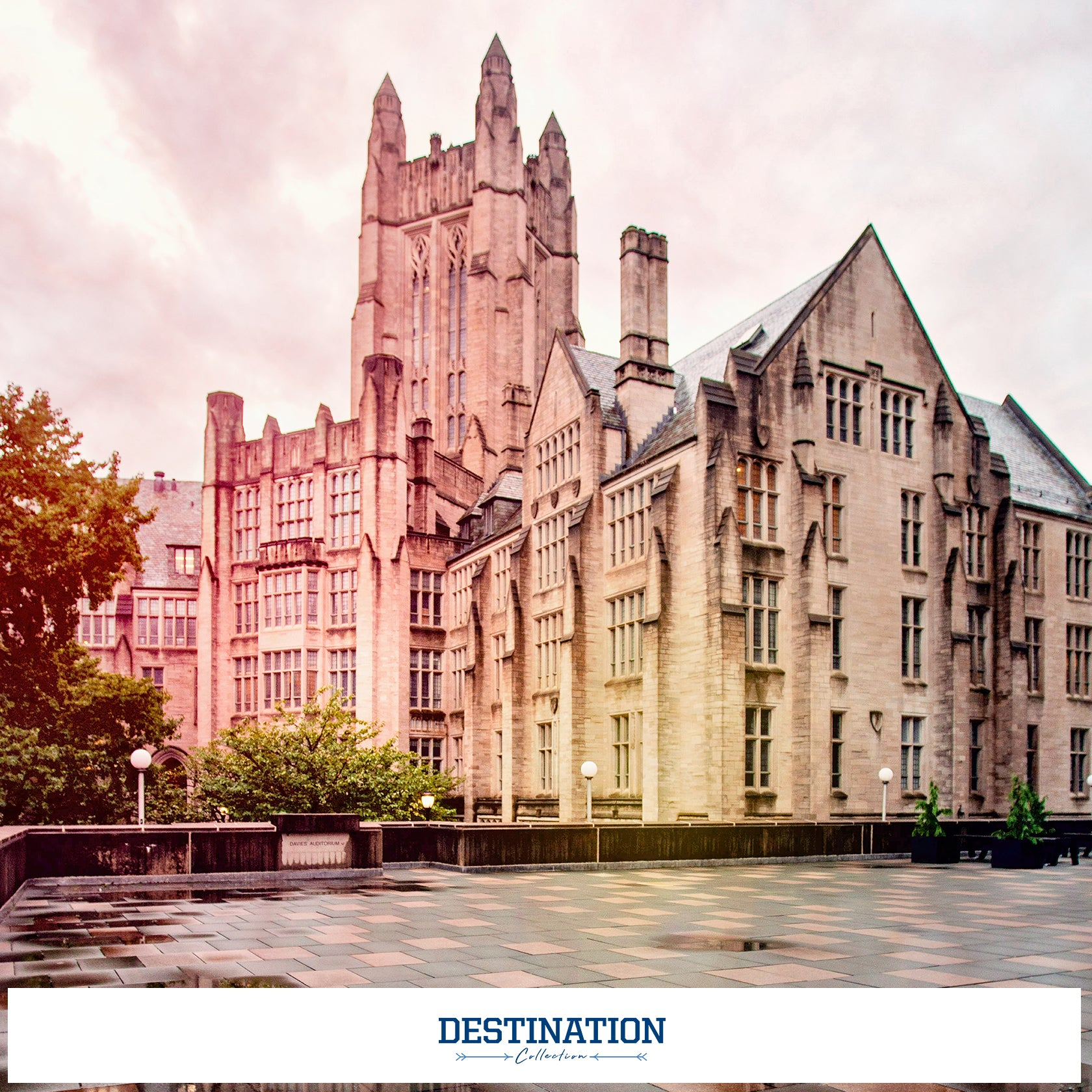 Yale Bulldogs - Destination