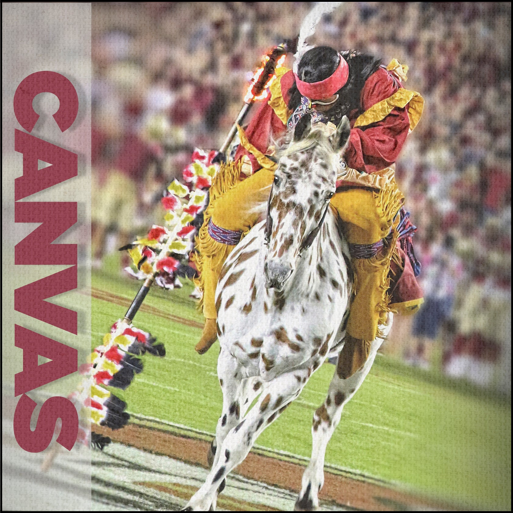 Florida State Seminoles - CANVAS