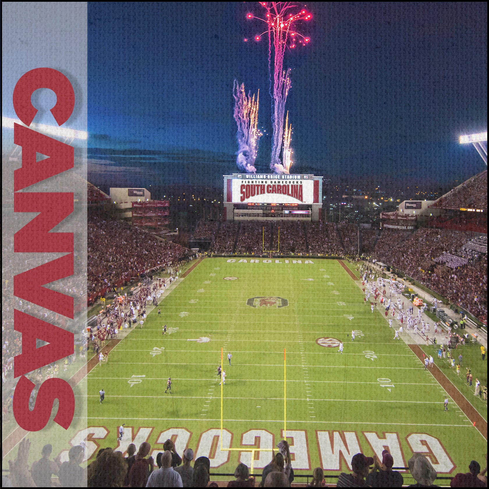 South Carolina Gamecocks - Canvas