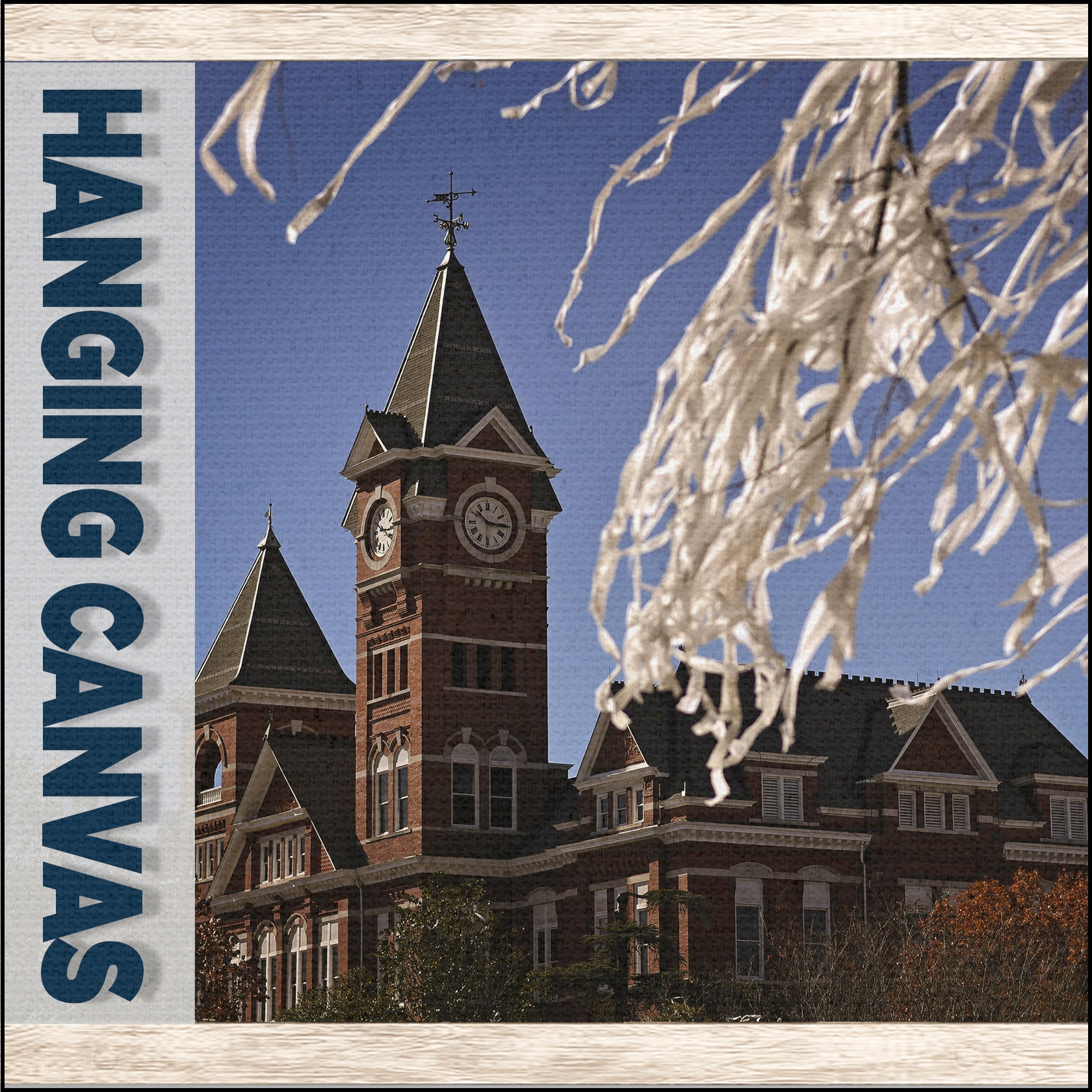 Auburn Tigers - Hanging Canvas