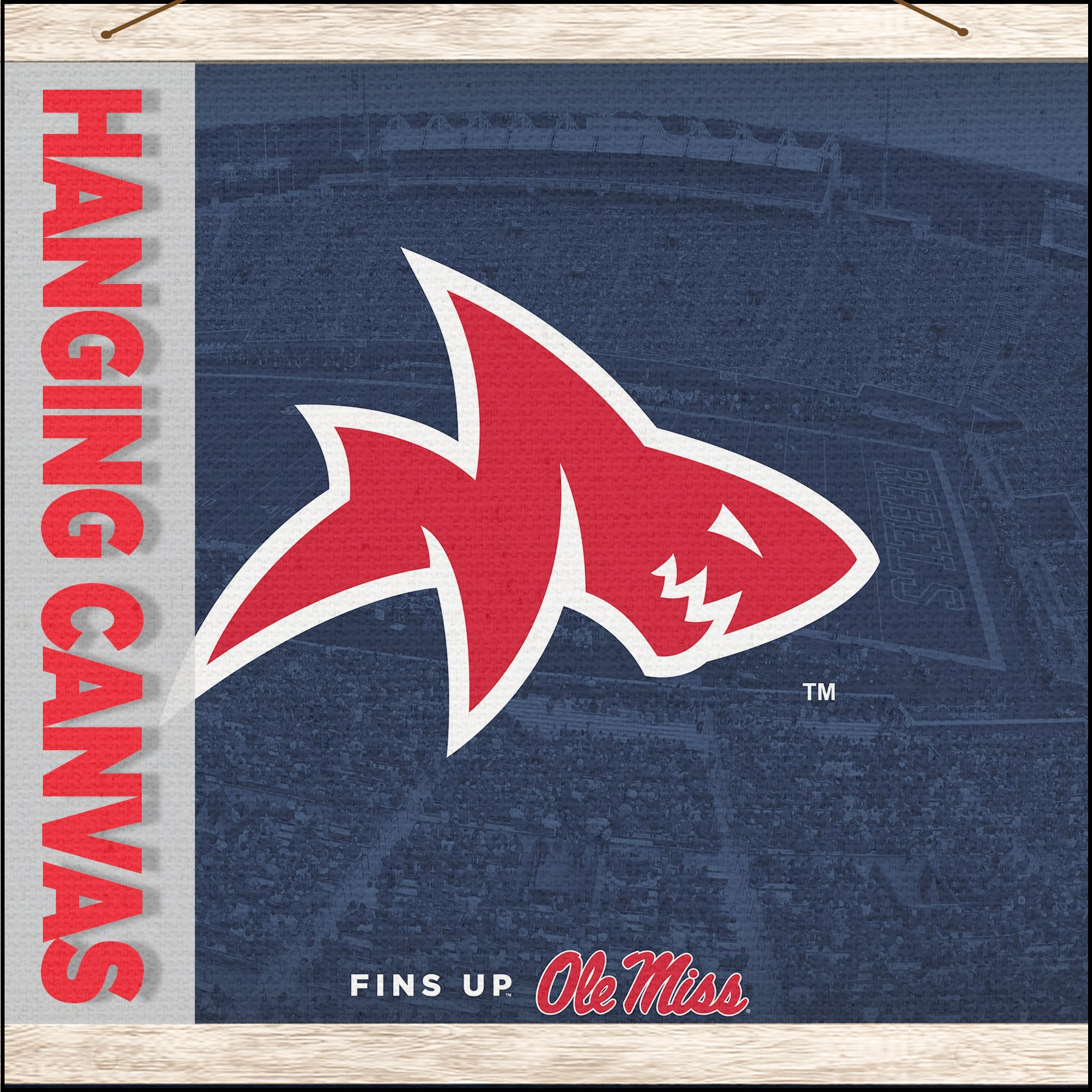 Ole Miss Rebels - Hanging Canvas Wall Art