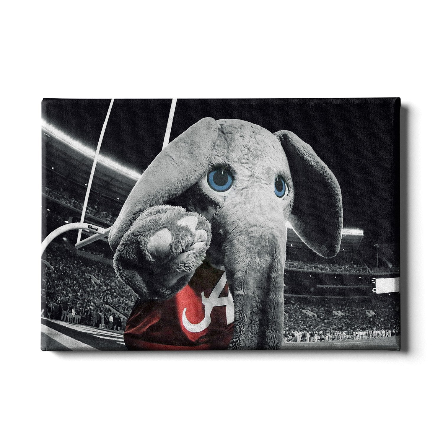 Alabama Crimson Tide - Big Al End Zone - College Wall Art #Canvas