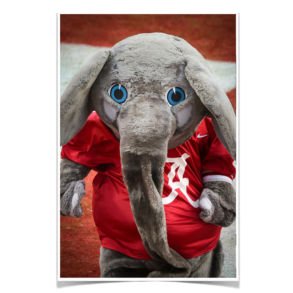 Alabama Crimson Tide - Big Al - College Wall Art #Canvas