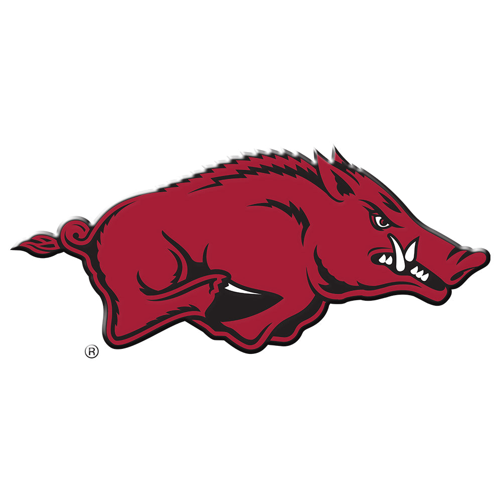 Arkansas Razorbacks -  Arkansas Mark-Single Layer Dimensional