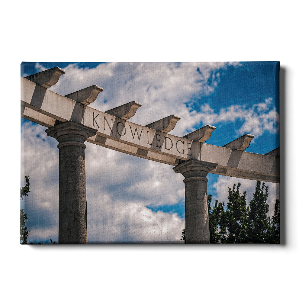 Arkansas Razorbacks - Greek Theater #Canvas