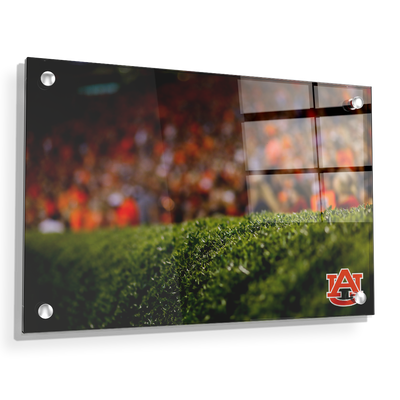 Auburn Tigers - The Hedges - College Wall Art#Acrylic