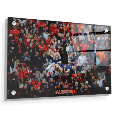 Auburn Tigers - War Eagle Soars - College Wall Art#Acrylic