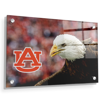 Auburn Tigers - War Eagle Up Close - College Wall Art#Acrylic