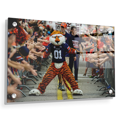 Auburn Tigers - Aubie at the Tiger Walk - College Wall Art#Acrylic
