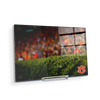 Auburn Tigers - The Hedges - College Wall Art#Acrylic Mini