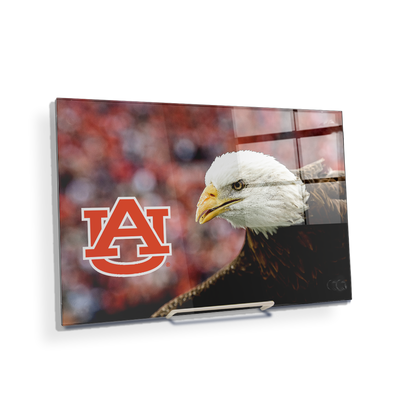 Auburn Tigers - War Eagle Up Close - College Wall Art#Acrylic Mini