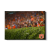 Auburn Tigers - The Hedges - College Wall Art#Canvas