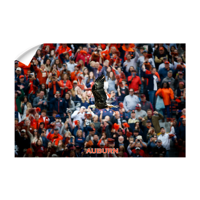 Auburn Tigers - War Eagle Soars - College Wall Art#Wall Decal
