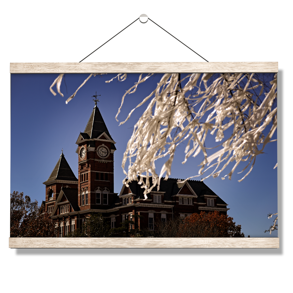 Auburn Tigers - Samford Toomers - College Wall Art#Canvas