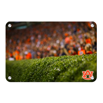 Auburn Tigers - The Hedges - College Wall Art#Metal