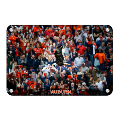 Auburn Tigers - War Eagle Soars - College Wall Art#Metal