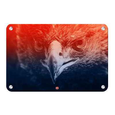 Auburn Tigers - Greetings War Eagle - College Wall Art#Metal