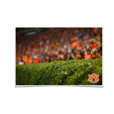 Auburn Tigers - The Hedges - College Wall Art#Poster