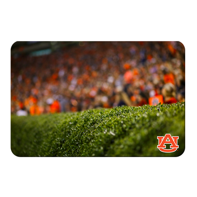 Auburn Tigers - The Hedges - College Wall Art#PVC