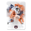 Auburn Tigers - Epic Run - College Wall Art#PVC