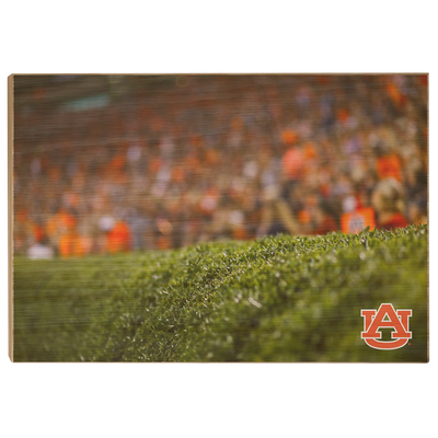 Auburn Tigers - The Hedges - College Wall Art#Wood