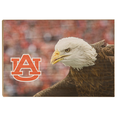 Auburn Tigers - War Eagle Up Close - College Wall Art#Wood