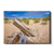 Cape Cod Sand Dune - College Wall Art
