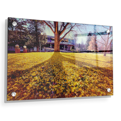 ETSU - Autumn Day - College Wall Art#Acrylic