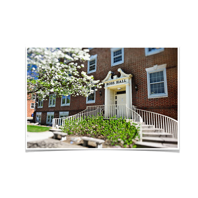 ETSU - Ross Hall - College Wall Art #Poster
