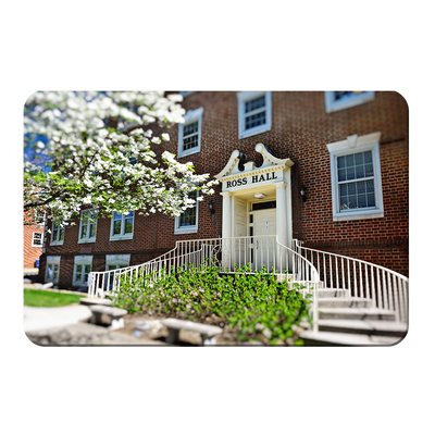 ETSU - Ross Hall - College Wall Art#PVC