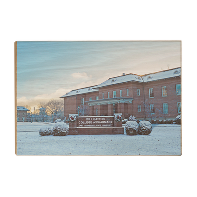 ETSU - Bill Gatton College of Pharmacy Winter - College Wall Art #Wood