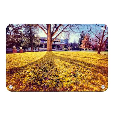 ETSU - Autumn Day - College Wall Art#Metal
