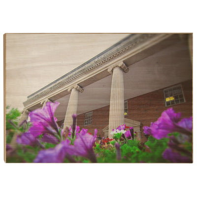 ETSU - Burgin Dossett Petunias - College Wall Art#Wood